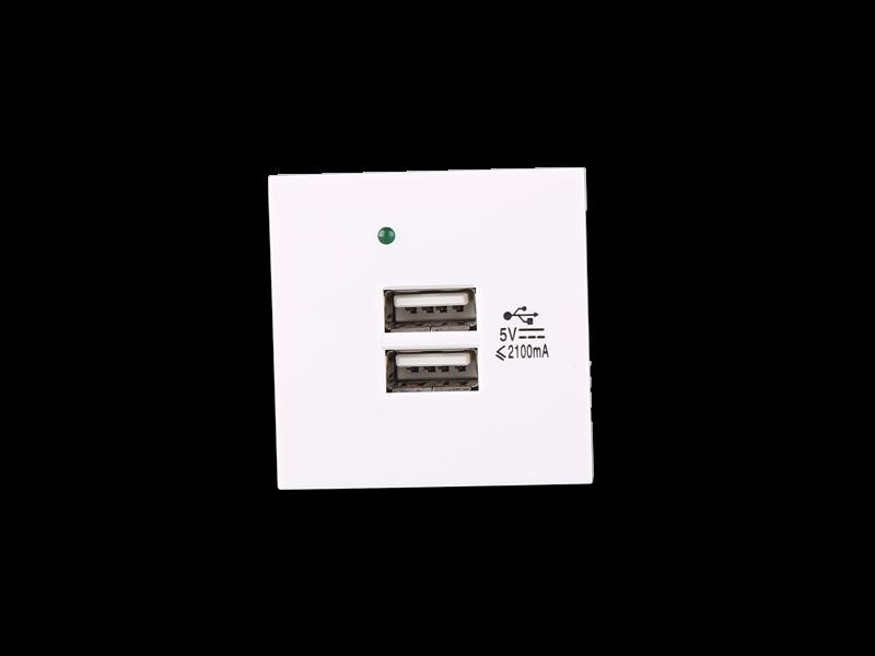双端口USB充电器【F21-C3】