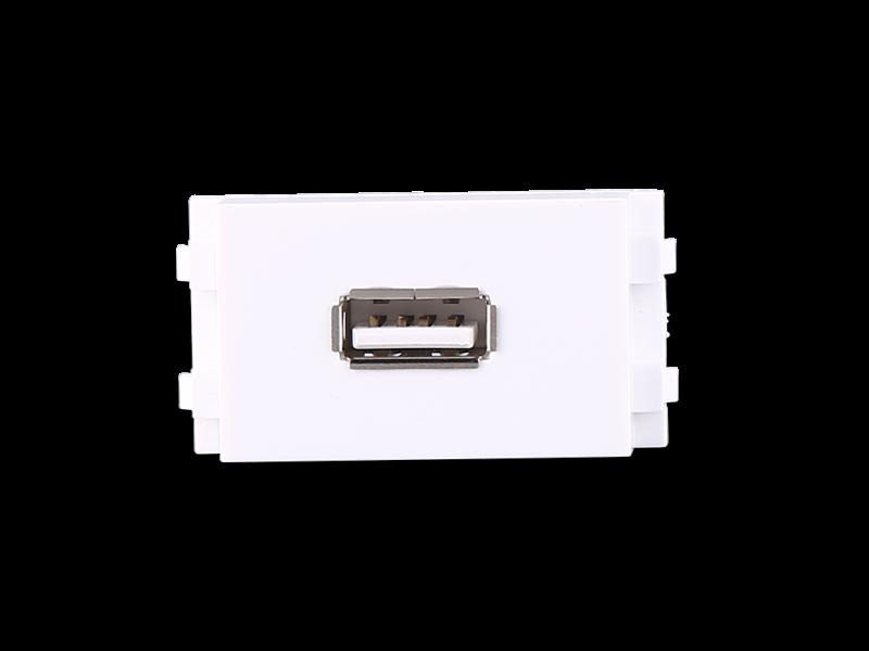 双USB数据插座【P29B】